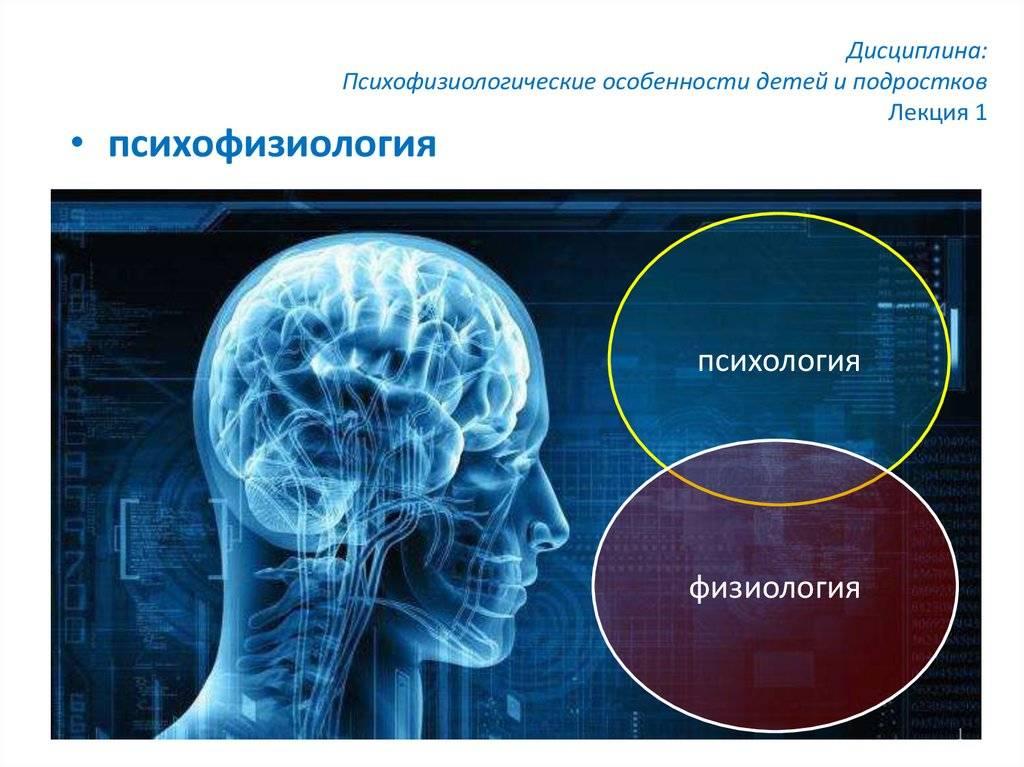 Психология: психофизиология - бесплатные статьи по психологии в доме солнца