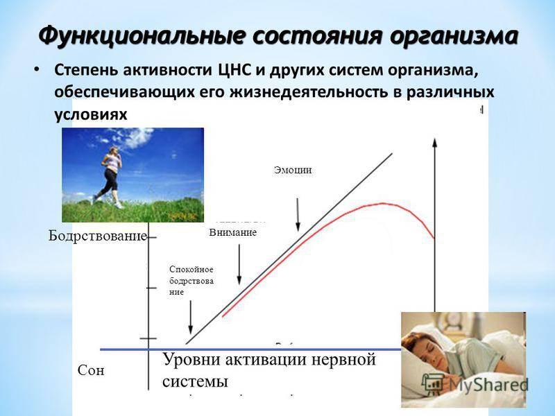 Психофизиологические функциональные состояния