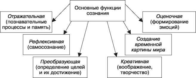 Сознание в психологии — особенности, структура и функции