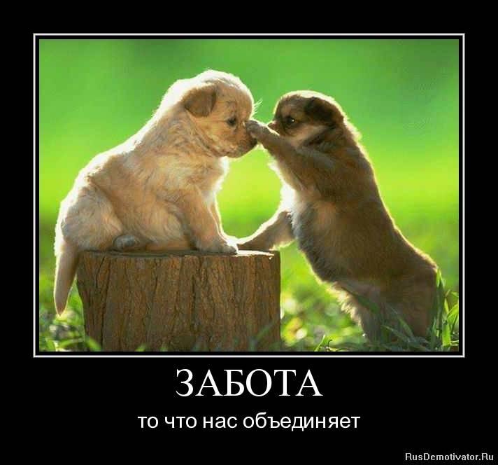 Забота - это любовь. любовь - это искренняя забота друг о друге.