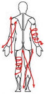 Комплексы упражнений лечебной физкультуры при неврите лицевого нерва