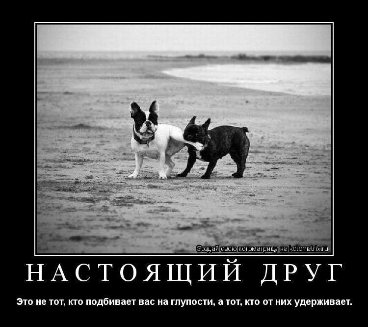 Кто такой друг, какими качествами должен обладать друг?