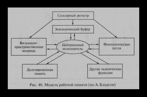 Виды памяти в психологии