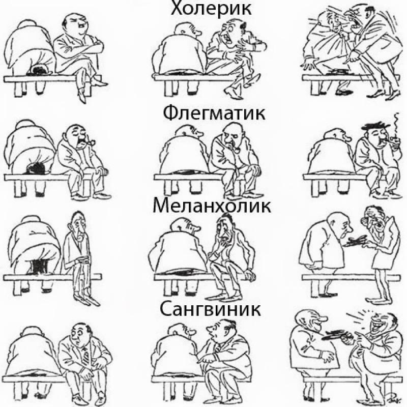 Психология: темперамент - бесплатные статьи по психологии в доме солнца