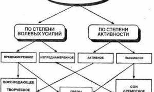 Метод мозгового штурма: примеры, правила, технологии