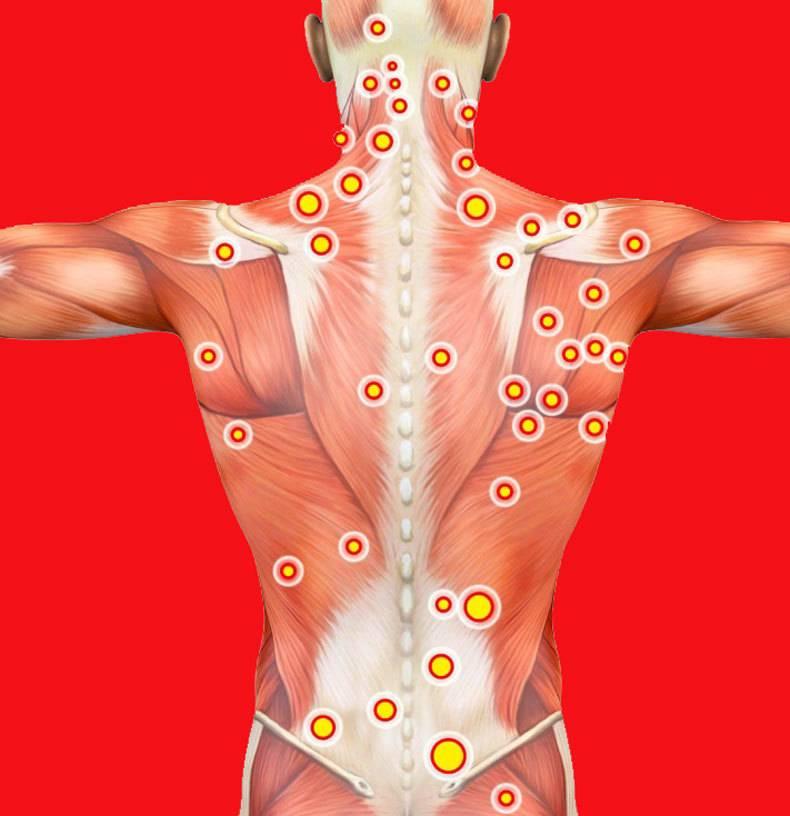 4 последствия мышечных зажимов, о которых вы не подозревали :: как правильно :: «живи!»
