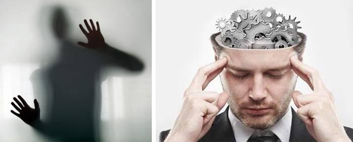 Психология: поведение человека - бесплатные статьи по психологии в доме солнца