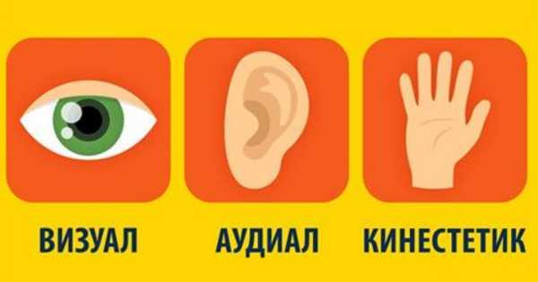 Кинестетик — это человек, который воспринимает все тактильно | ktonanovenkogo.ru