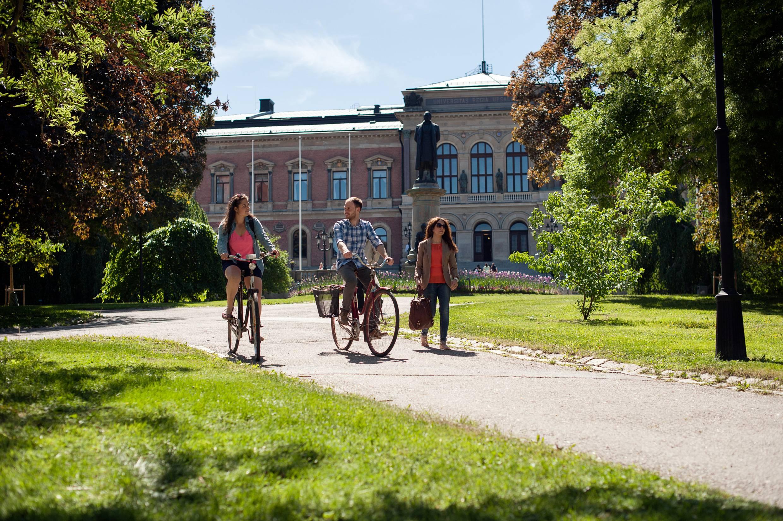 Все, что вы хотели знать о поступлении в магистратуру и на phd в швеции, но боялись спросить