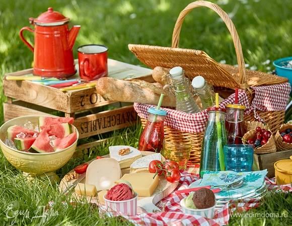 Правила проведения пикников | ольга серебровская